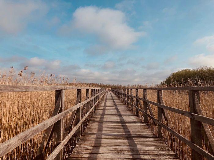 Empty wooden footbridge amidst plants on land against sky
