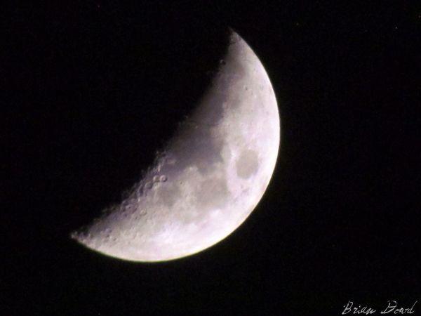 Good night EyeEm Moon Good Night Moon