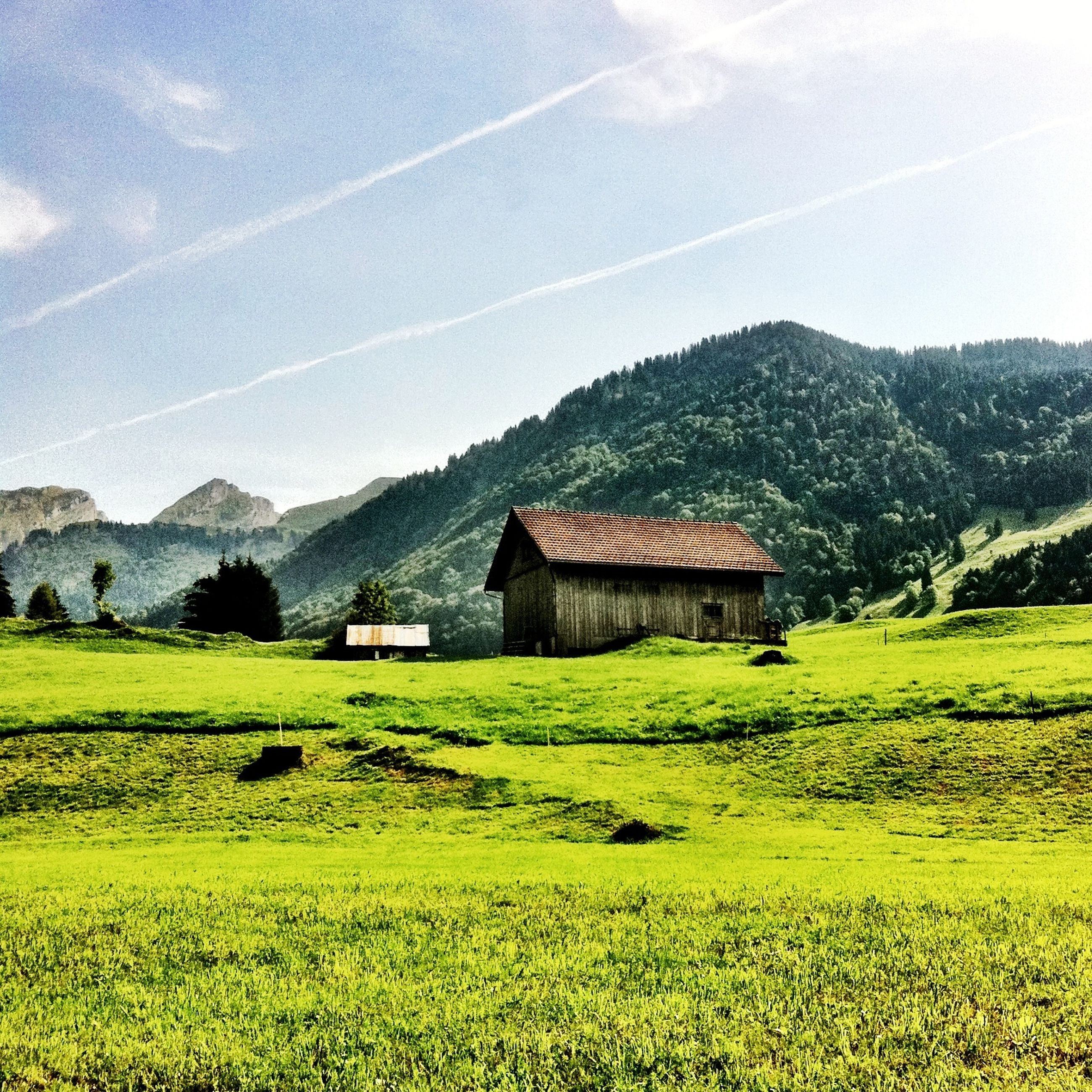 mountain, landscape, grass, field, house, rural scene, tranquil scene, built structure, building exterior, architecture, sky, tranquility, green color, scenics, beauty in nature, mountain range, nature, grassy, agriculture, farm
