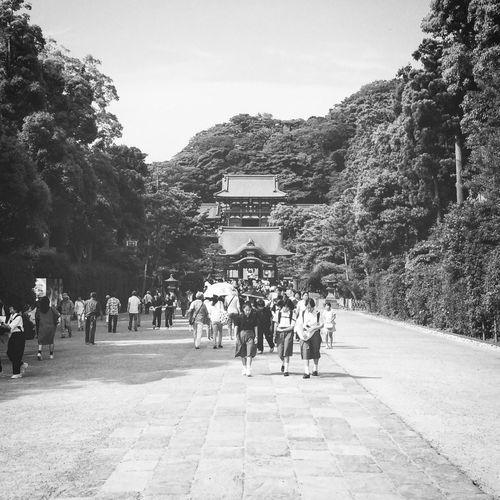 Shrine Kamakura