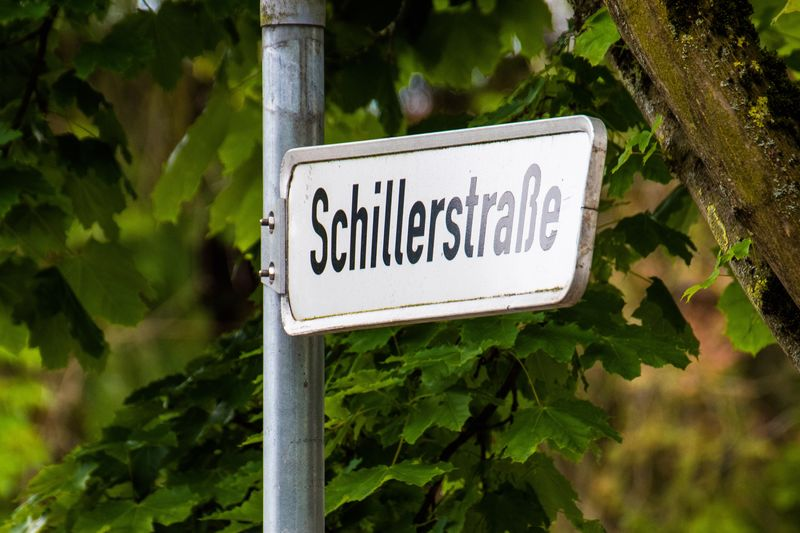 Schiller street Text Communication Sign Western Script Plant Guidance Information Tree Close-up Nature No People Growth Arrow Symbol Outdoors Warning Sign Information Sign Day Road Sign Capital Letter Road