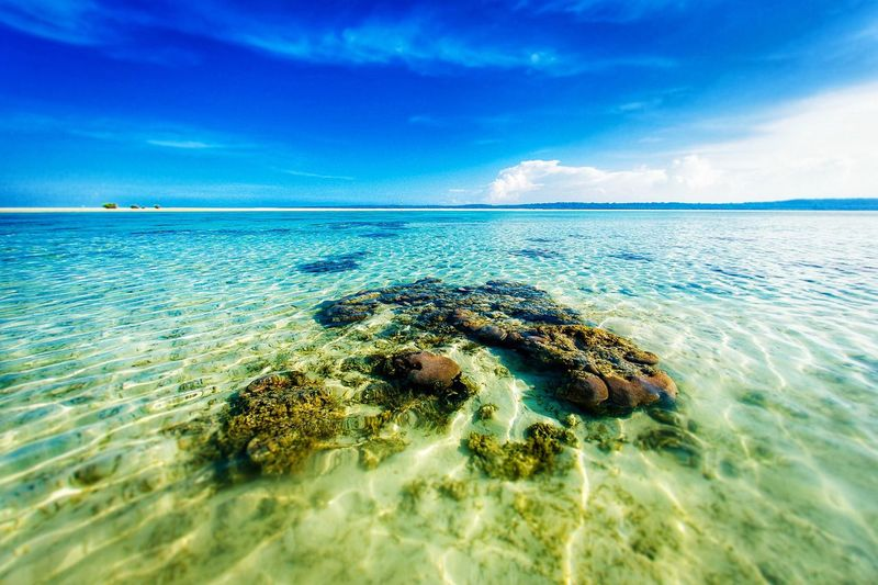 EyeEmNewHere Sea Sky Cloud - Sky Water Nature Beauty In Nature Scenics Horizon Over Water Tranquility Tranquil Scene Blue No People Day Underwater Outdoors Beach UnderSea Sea Life vacation Connected By Travel