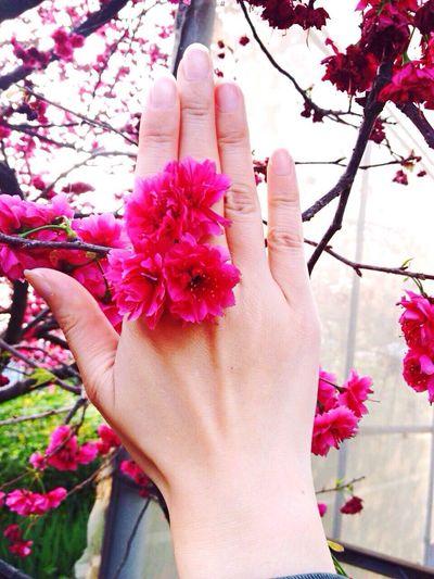 Flower ring?