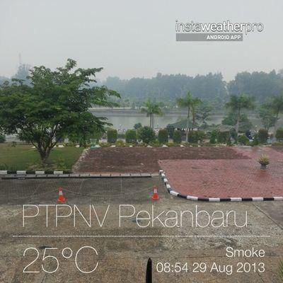 Smoke, rainy, its getting worse... :( Pekanbaru Smoke Ptpnv Alfanova