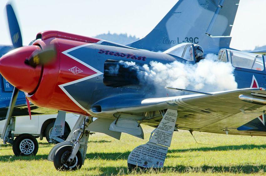 Cockpit Propeller Airplane Warbirds Vintage Aircraft Military Airplane Fighter Plane Engine Start Smoke