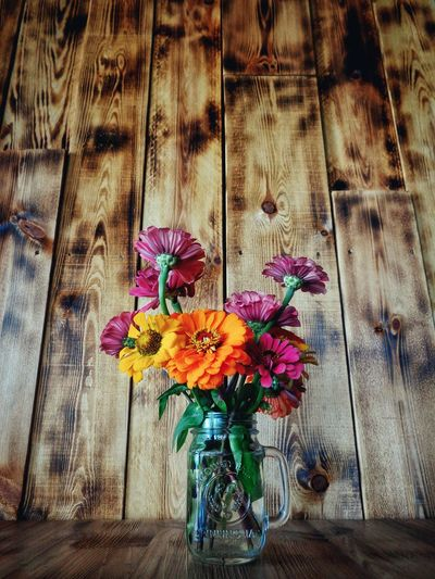 Close-up of colorful flowers against wooden wall