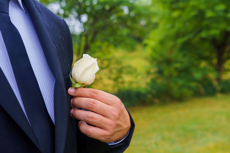 Close-up of hand holding rose