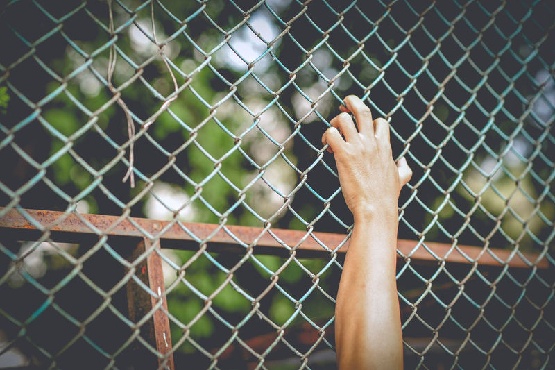 Cropped hand holding chainlink fence