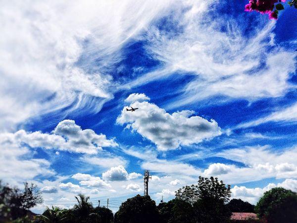 plane ,cloud。 Beautiful Surroundings Relaxing Taking Photos Enjoying The Sun