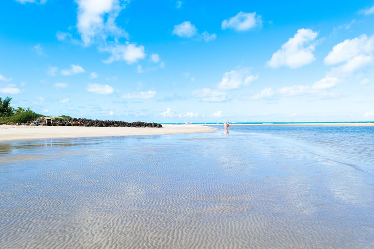 Maragogi Beach at low tide Sea Beach Blue Water Sky Cloud - Sky Nature Day Tranquility Scenics Tranquil Scene Travel Destinations Outdoors Vacations Sand Beauty In Nature Landscape Horizon Over Water Brazilian Northeast Nordeste Brasileiro Maragogi Beach Brazil Alagoas Palm Tree Coastline