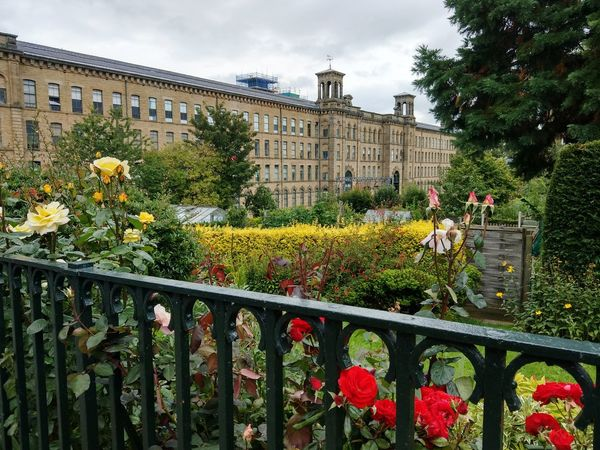 Salts Mill & Gallery Flower Architecture History Building Exterior Nature Tree Sky Plant Growth Outdoors Cloud - Sky Red Travel Destinations Day No People Flowerbed