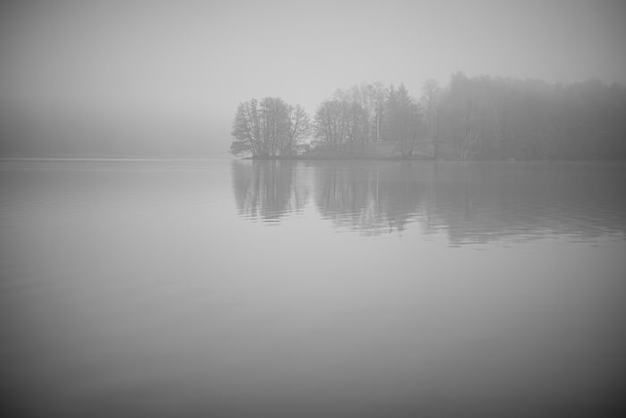 Foggy lake Reflection Blackandwhite Water Tranquility Tree Tranquil Scene Beauty In Nature Scenics - Nature Reflection No People Nature Fog Idyllic Day Lake Non-urban Scene