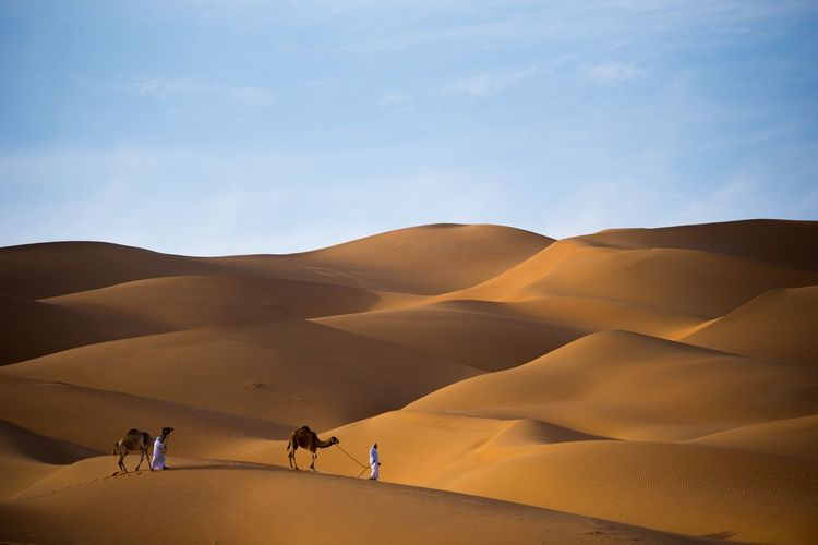 Men with camels on sand dune in desert against sky