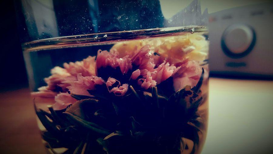 Best tea flower foto colection First Eyeem Photo