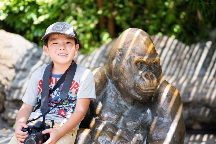 Gorilla Zoo Zoo Animals  Ueno Zoo Too Hot Fujifilm_xseries FUJIFILM X-T1 XF 56mm F1.2 APD Stature My Son