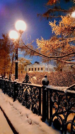 Nieve Tree Snow