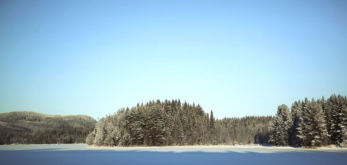 Blue Blue Sky Cold Forest Frozen Horizon Over Land Ice Lake Landscape Non-urban Scene Outdoors Pastel Power Rural Scene Snow Tranquility Trees Vignette Winter Landscapes With WhiteWall The Great Outdoors - 2016 EyeEm Awards Ice Age Atmospheric Mood