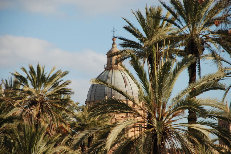 Dome Church Cathedral Sun Lights Shadows Plants Tree Palm Tree Sky Architecture Built Structure Building Exterior Palm Leaf Tower Spire