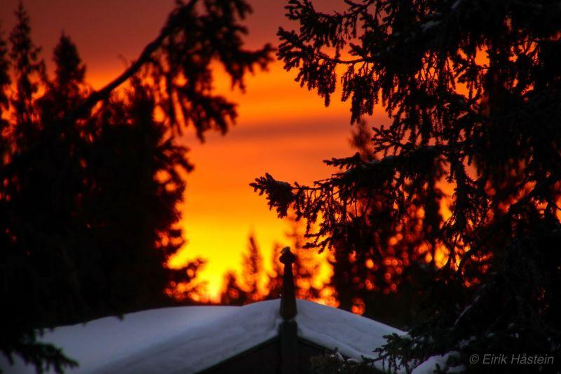 Sunrise -