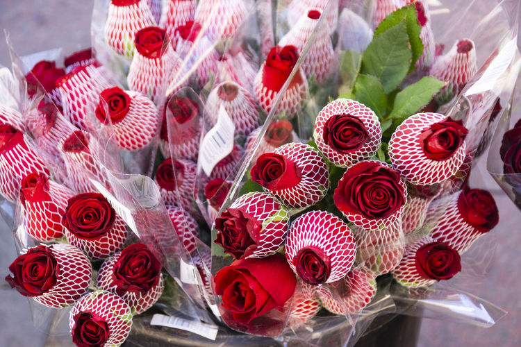 End Plastic Pollution Red Roses Beauty In Nature Blossoms  Bouquet Close-up Flower Flower Arrangement Foil  Freshness Large Group Of Objects Nature Plastic Red Red Color Red Flower Roses Roses🌹 Transparency The Still Life Photographer - 2018 EyeEm Awards