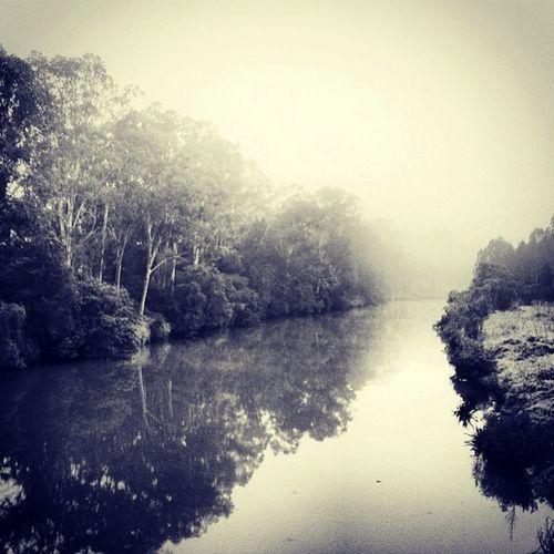 A River Somewhere