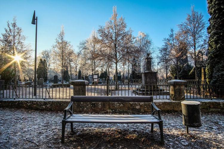 Bench Tranquility Uppsala Winter Blue Sky Cimetary Cold Temperature No People Snow Street Sun Sunstar Tree Winter