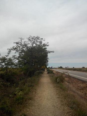 2015  Camino CaminodeSantiago El Camino De Santiago Jakobsweg Road Straße Way Weg Wege Und Strassen
