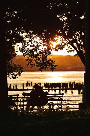 Sunset Sunset_collection Hudson River Hudson River Greenway Water Tree Plant Sitting Silhouette Real People Nature Couple - Relationship Bench Scenics - Nature Leisure Activity Outdoors Lifestyles Two People Lake Seat Beauty In Nature Sky Tranquility Men