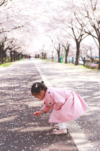 Girl picking up petals while standing on street