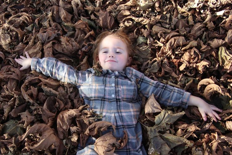 Portrait of cute boy with dry leaves