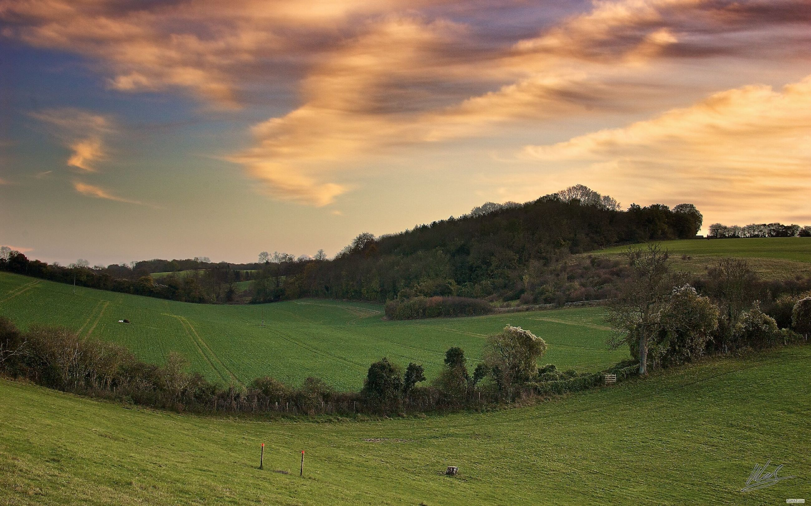 grass, sky, landscape, field, tranquil scene, tranquility, scenics, beauty in nature, cloud - sky, nature, green color, tree, rural scene, grassy, growth, agriculture, cloud, sunset, idyllic, cloudy