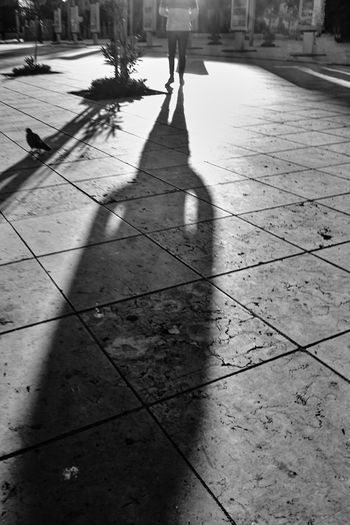 High angle view of shadow on footpath in city