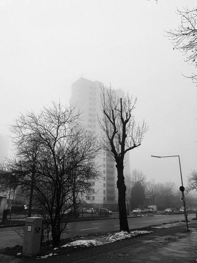 Foggy Berlin