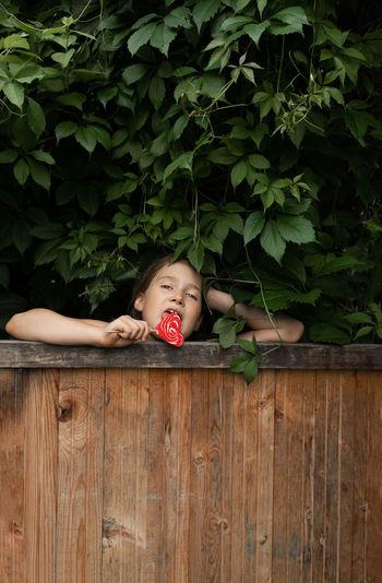 Portrait of a girl lying on wood