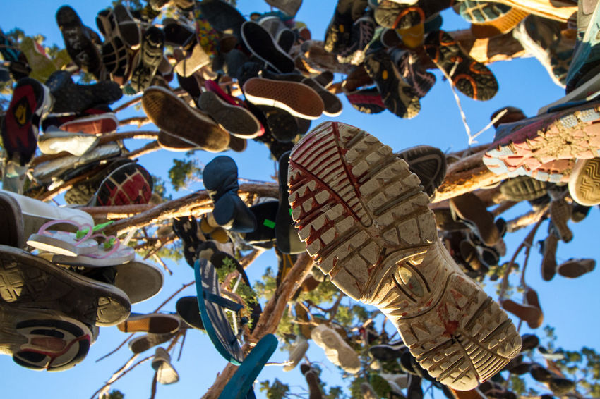 The Shoe Tree on the California-Nevada border. It's one of those typical weird American roadside attractions. Abundance Creativity Daytime Hanging Large Group Of Objects Lots Of Fun Obscure_of_our_world Odd Oddities Outdoors Roadside Attractions Shoe Shoe Tree ShoePorn Shoes Shoes In Trees Travel Traveling Tree Tree With Shoes Unique USA USAtrip Weird Weird Sightings