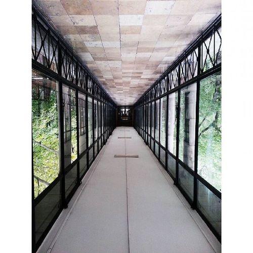 Abstract Art Corridor Upsidedown Tokmindegy Doesntmatter Bme Oldsector Connection Universitylife Matekzh