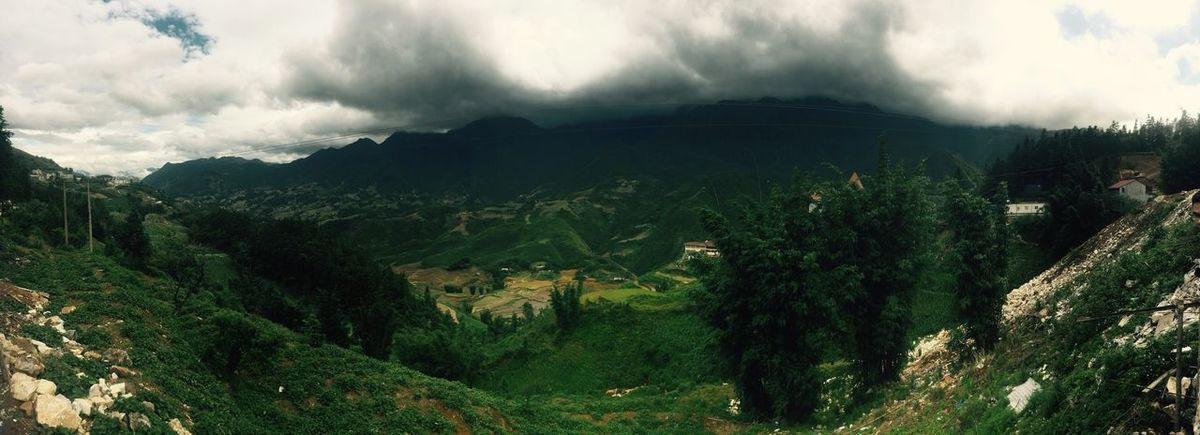 Sapa Town with Green Moutain and Terraces Terraces Green Mountain Green Sapa Sapa Village  Sapa, Vietnam Sapa Sapa Terraces Sapa Mountain Cloud Sunset Cloud And Sky Rain Coming Mountain Mountain View Mountains And Sky Traveling Vietnam Travel Travel
