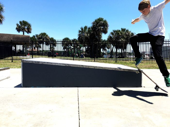 DeBaun antigravity Skateboarding Skateboard Park Skateboard Sunlight Tree Plant Nature Day Shadow Real People