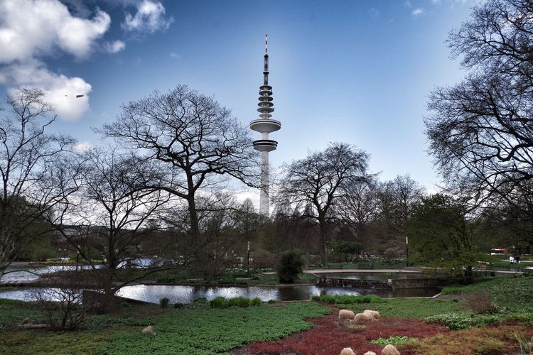 View of trees in park with tower in background