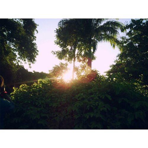 ❤ Laguinho Ufpe Federal 👏