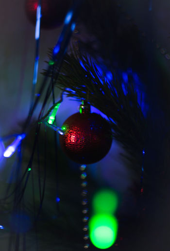 Christmastime Marry Christmas Cristmasdecor Cristmas Cristmastree Cristmas Time♥ New Year Cristmas Tradition Happy New Year Cristmastime CRISTMAS💙 Cristmas Tree New Year Around The World New Years