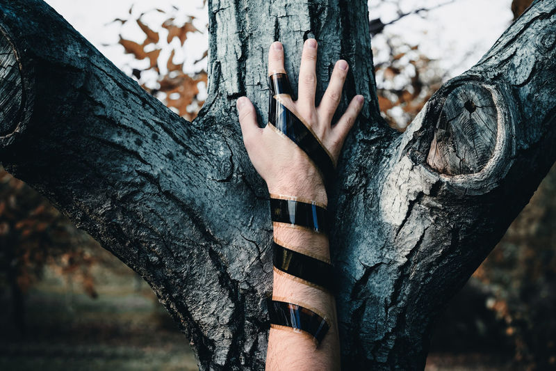 Cropped Hand Wrapped With Film Reel On Tree