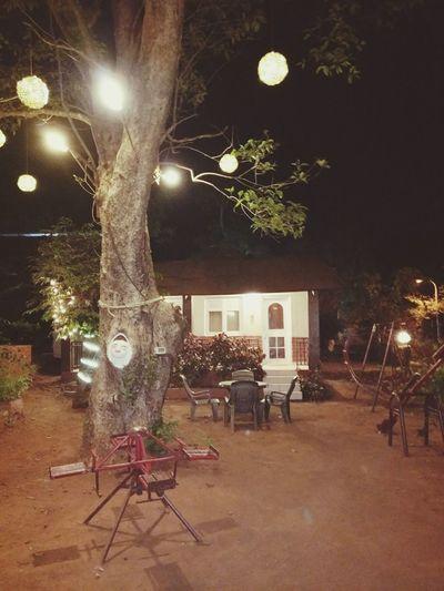 Matheran Weekendgateaway Near Pune Night Illuminated No People Tree Lanterns In The Dark