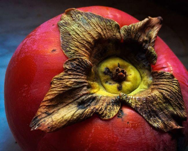 Macro Fruit IPS2016Closeup