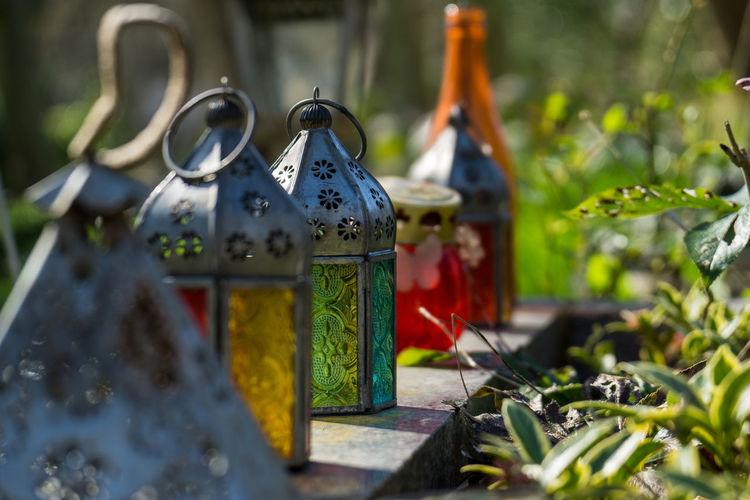 Close up of lanterns on field