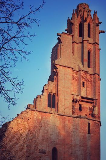 Architecture Religion Building Exterior Built Structure Place Of Worship Spirituality Tower No People Low Angle View History Clear Sky Outdoors Day Bell Tower Tree Sky Low Angle View Schloss Castle Bad Dürkheim Germany Rheinland-Pfalz