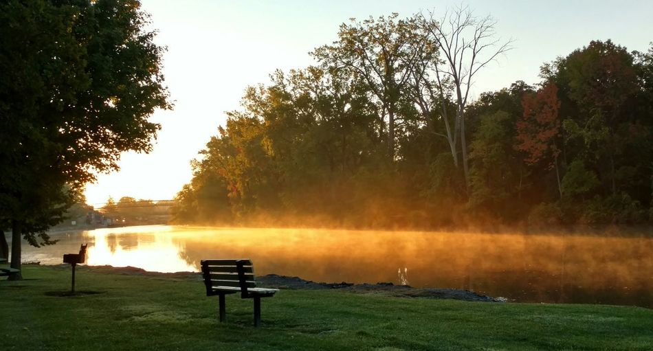 Although late for work, this scene demanded a stop to capture it. Fog over the canal at sunrise Tree Nature Grass Water Outdoors No People Outdoor Pursuit Sky Day Relaxation Reflection Beauty In Nature