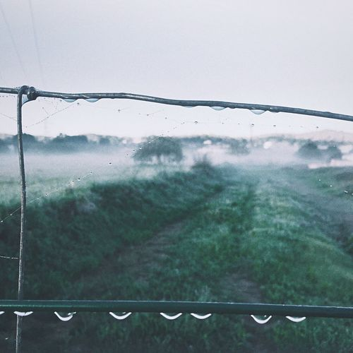 Misty foggy morning Open Edit VSCO IPhoneography Nature_collection Fall Beauty Ibiza Mobilephotography EyeEm Nature Lover IPSWeather It's Cold Outside