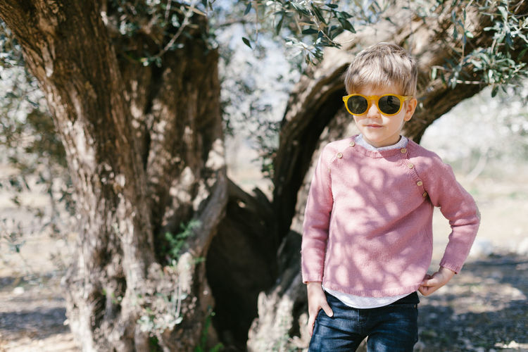 Portrait of boy wearing sunglasses standing against tree
