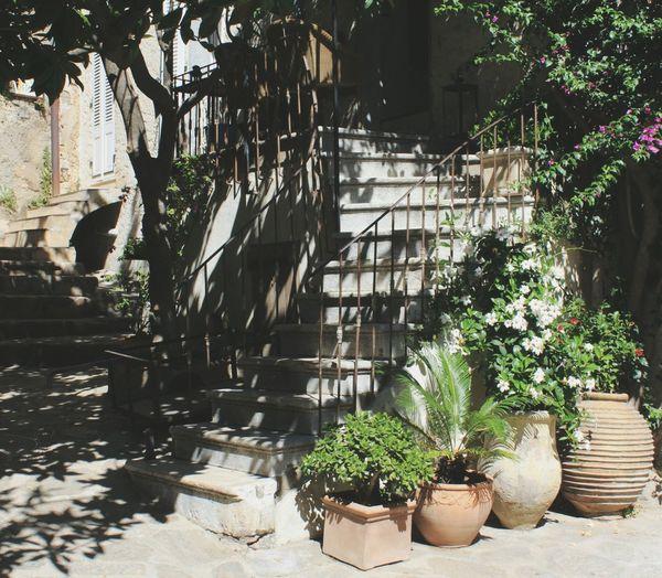 Petit bonheur. Sérénité Plant Architecture House Nature Relaxing Quiet Moments Vacances Liberté Taking Photos Famille Ruelles Ombres Soleil Calme